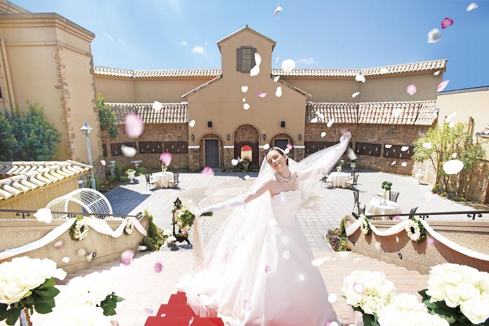 【夏に結婚式をお考えのカップルへ】<br /> 7月・8月ご希望のカップルへのプレゼントを!